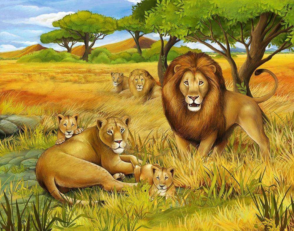 Рисунки львиц и львов