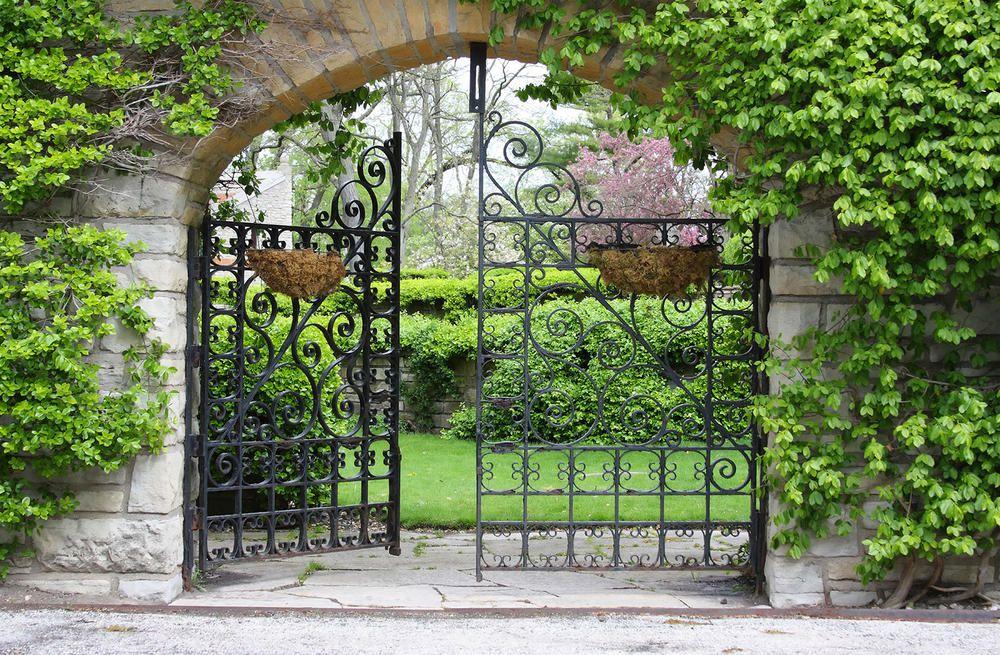 Горошек, картинки с воротами