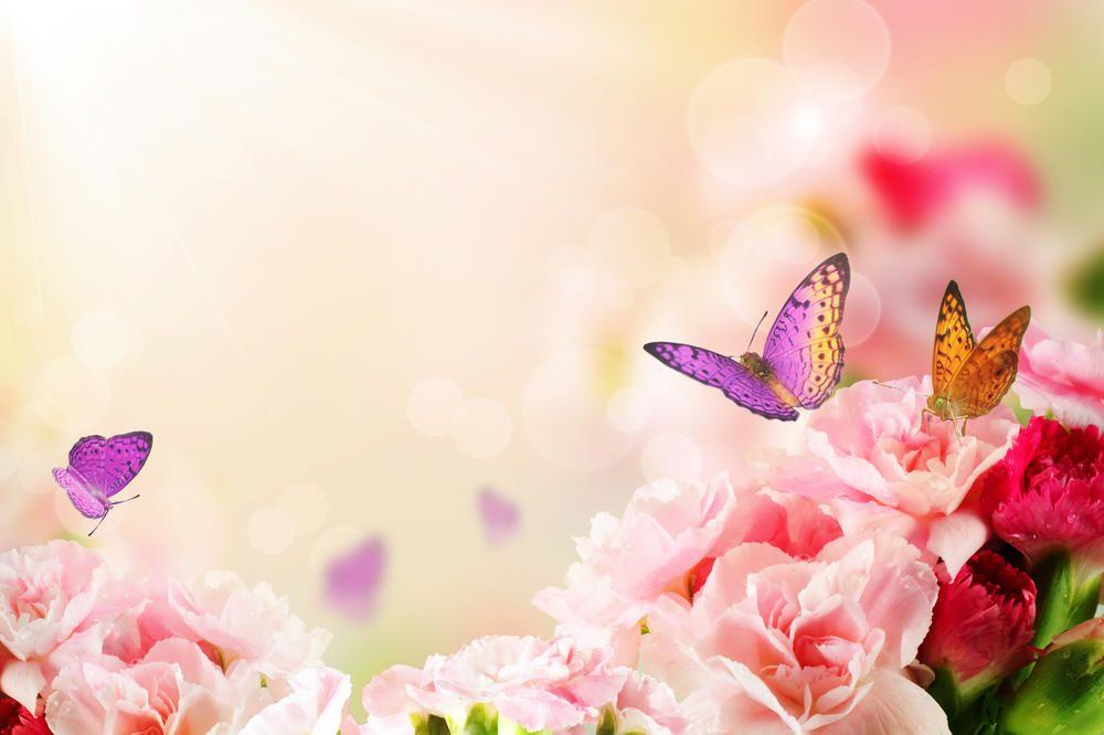Открытка с бабочкой для фотошопа, днем